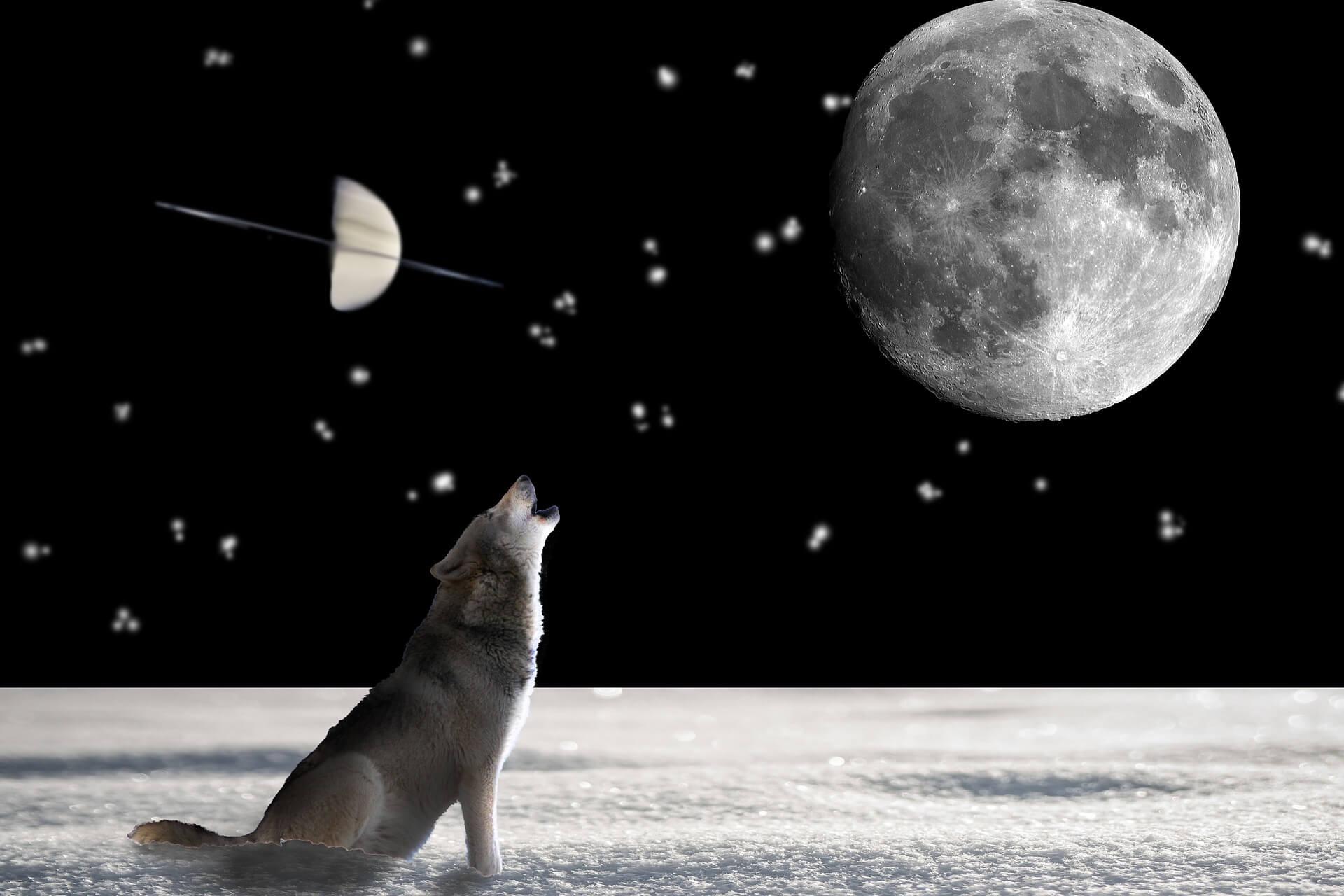 Luna, Saturn in Ketu – kaj nam prinašajo?